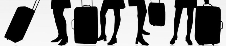 Kabinväska | Hitta kabinväskor som fått Bäst i Test